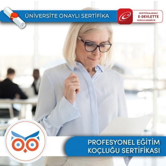 Profesyonel Yönetici Koçluğu Sertifika Programı